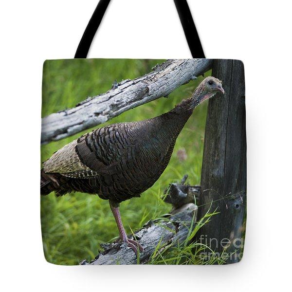 Rural Adventure Tote Bag by Nina Stavlund