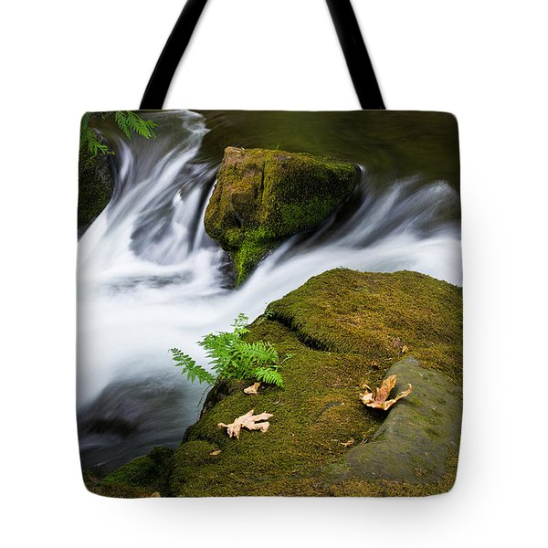 Rushing Water At Whatcom Falls Park Tote Bag by Priya Ghose