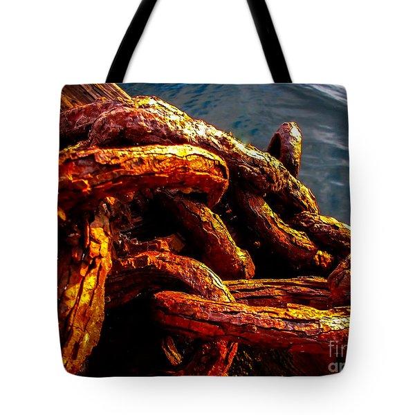 Rust Tote Bag by Robert Bales