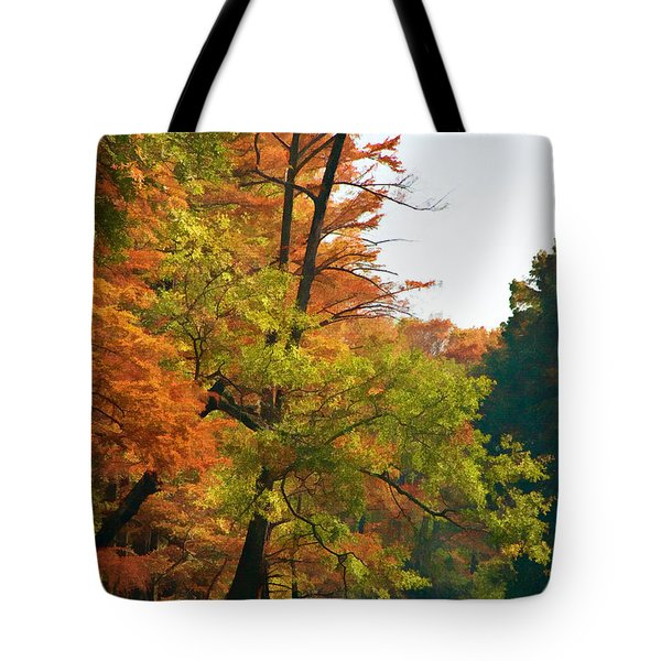 Rustic Autumn Tote Bag