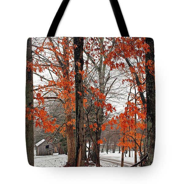 Tote Bag featuring the photograph Rustic Winter by Todd Blanchard