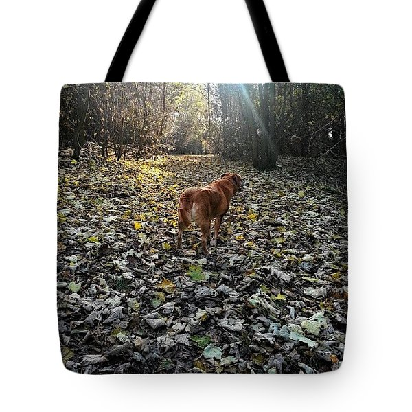 Rustle Through The Leaves Tote Bag