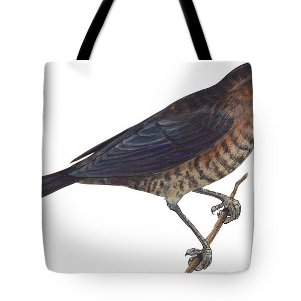 Rusty Blackbird  Tote Bag by Anonymous