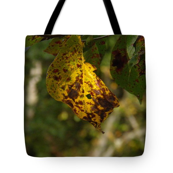 Tote Bag featuring the photograph Rusty Leaf by Nick Kirby