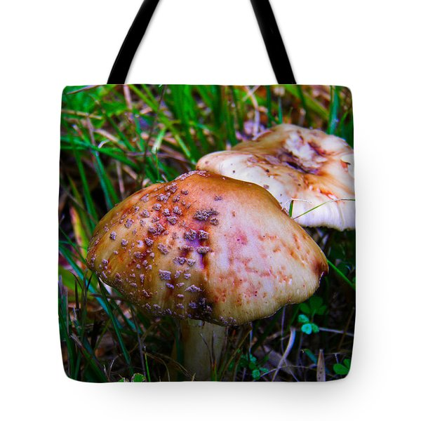 Rusty Mushroom Tote Bag by Nick Kirby