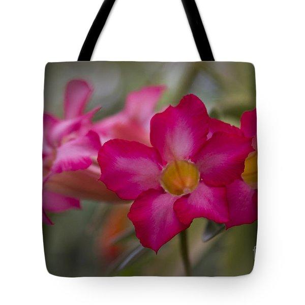 Sabi Star - Desert Rose Garden Of Dreams Hawaii Tote Bag by Sharon Mau