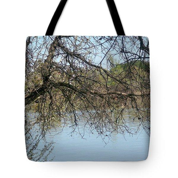 Sacramento River Tote Bag
