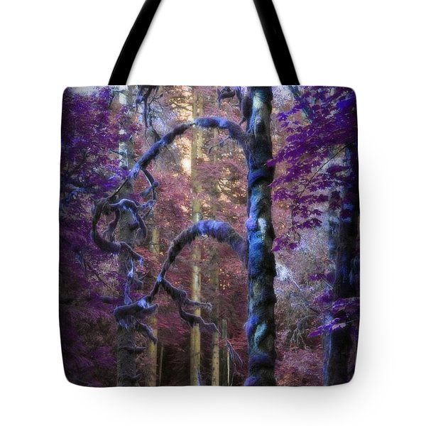 Tote Bag featuring the photograph Sacred Forest by Amanda Eberly-Kudamik