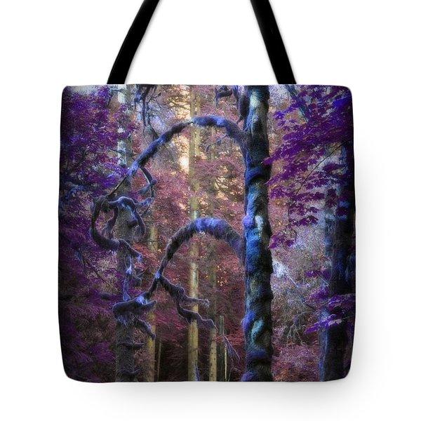 Sacred Forest Tote Bag by Amanda Eberly-Kudamik