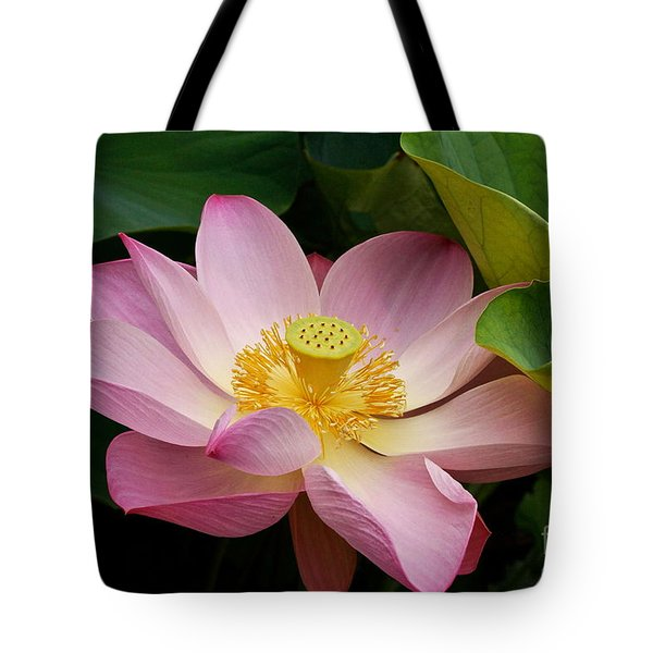 Sacred Lotus Tote Bag by Byron Varvarigos