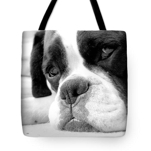 Sad Boxer Dog Tote Bag