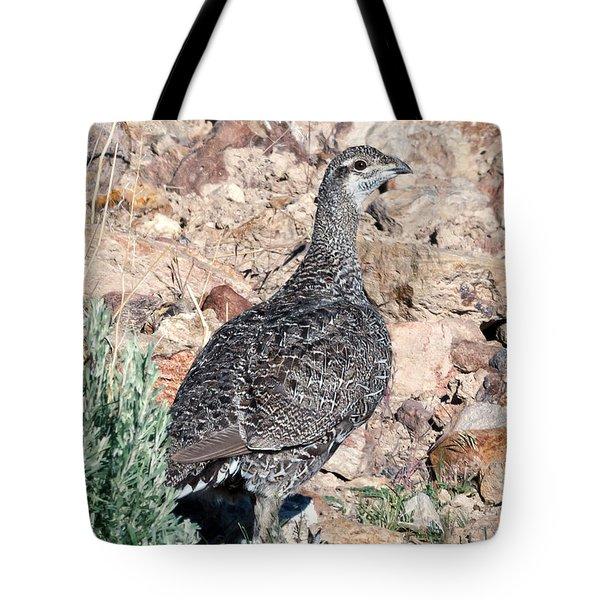 Sage Grouse Tote Bag