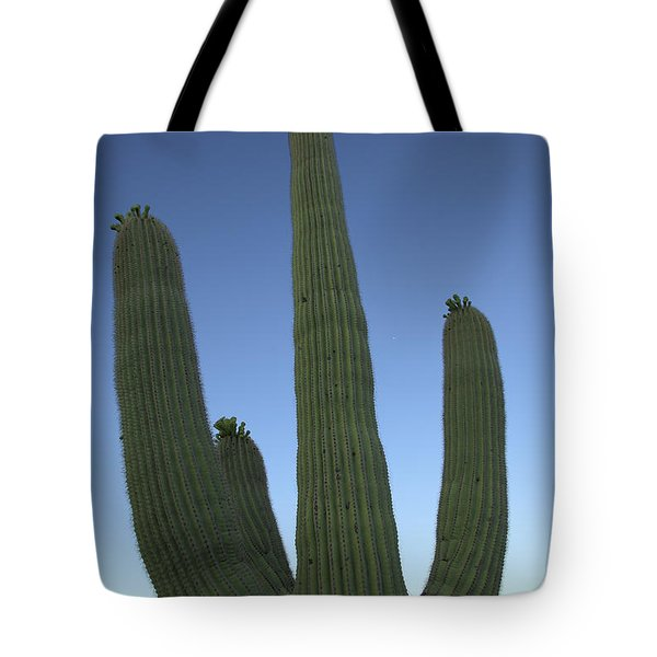 Tote Bag featuring the photograph Saguaro Cactus At Sunset by Alan Vance Ley