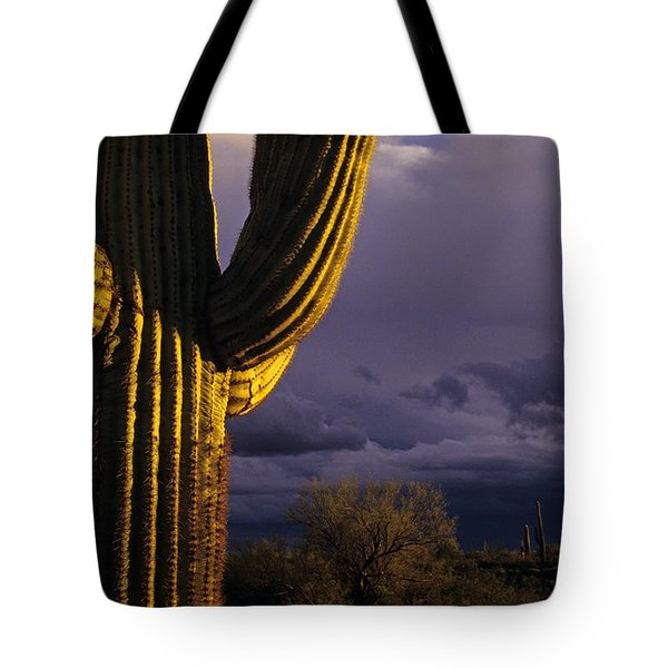Saguaro Cactus Sunset At Dusk Arizona State Usa Tote Bag