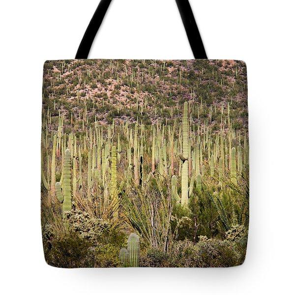 Saguaro Colony Tote Bag