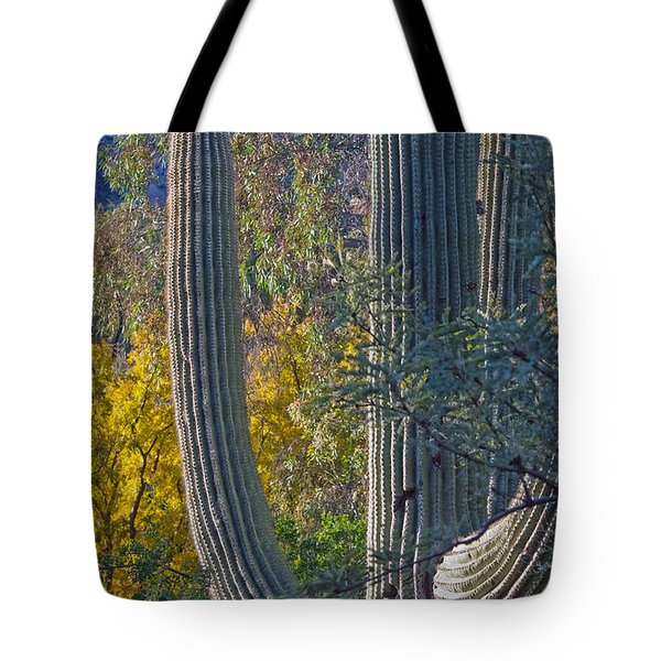 Saguaro Fall Color Tote Bag