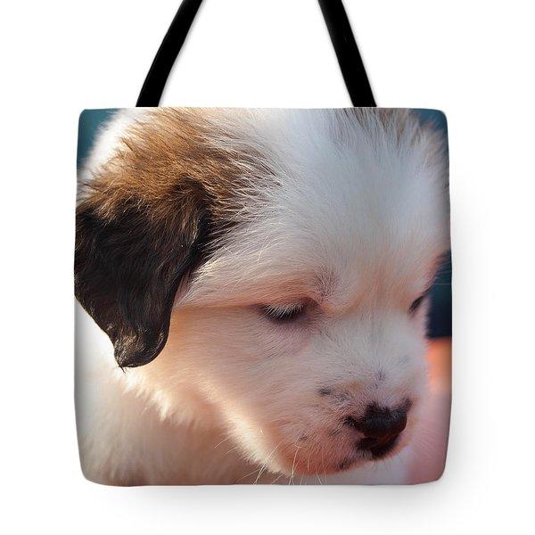 Saint Bernard Puppy Tote Bag by Mechala  Matthews
