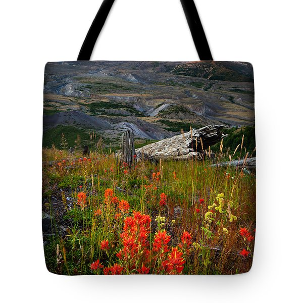 Saint Helens Paintbrushes Tote Bag