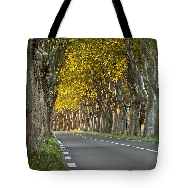 Saint Remy Trees Tote Bag by Brian Jannsen