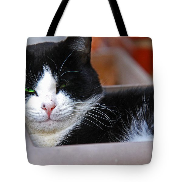 Salem Resting Tote Bag by Andy Lawless