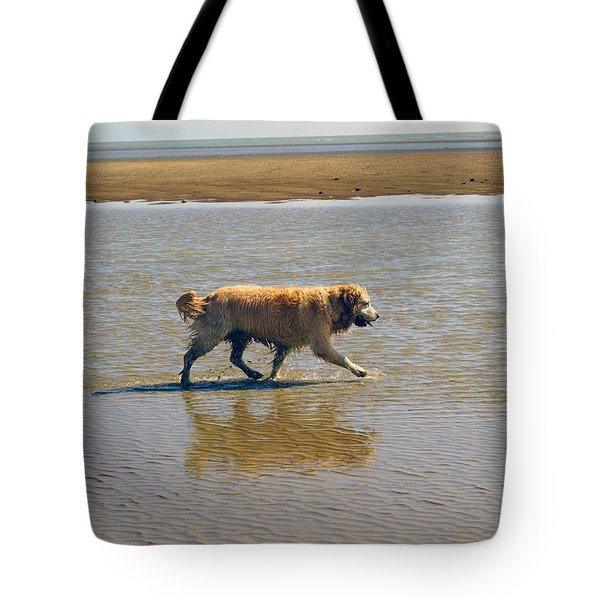 Tote Bag featuring the photograph Sally Iv by Cassandra Buckley