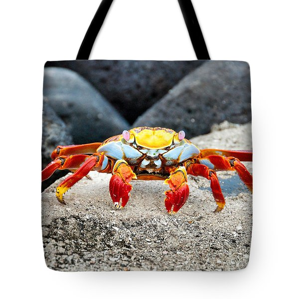 Sally Lightfoot Crab Tote Bag by William Beuther