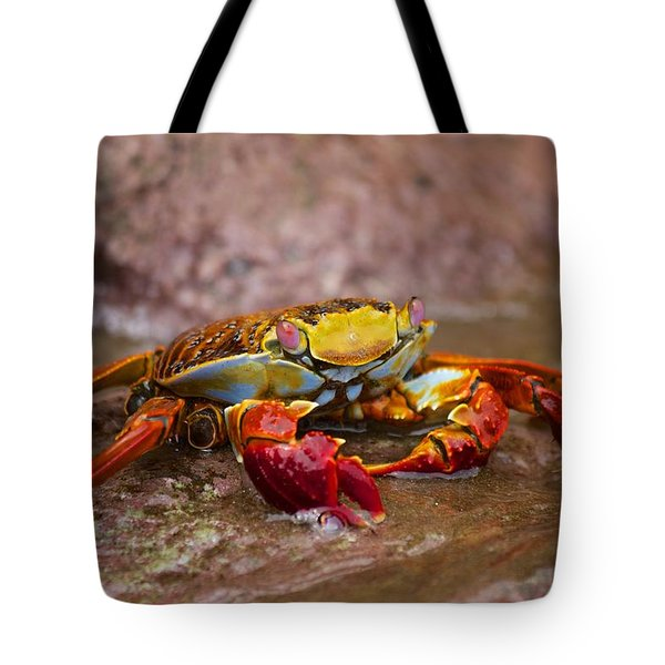 Sally Lightfoot Feeding Tote Bag