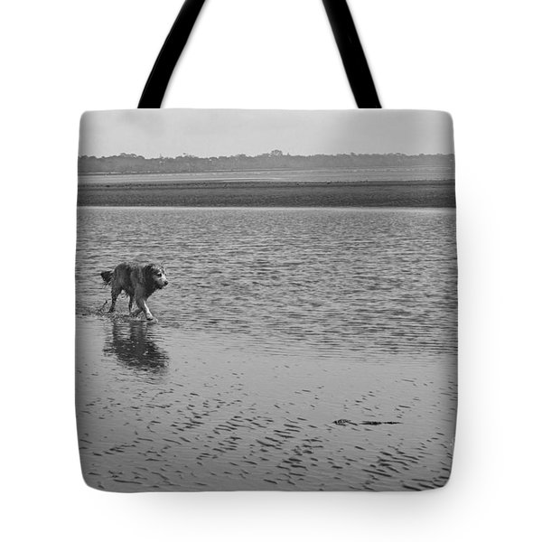 Tote Bag featuring the photograph Sally V by Cassandra Buckley