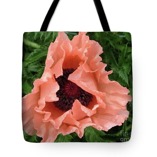 Salmon Colored Poppy Tote Bag by Barbara Griffin