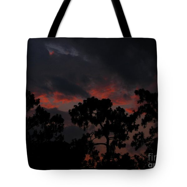 Tote Bag featuring the photograph Salmon Sunset by Greg Patzer
