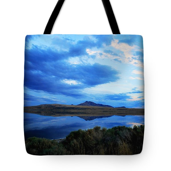 Tote Bag featuring the photograph Salt Lake Antelope Island by Matt Harang