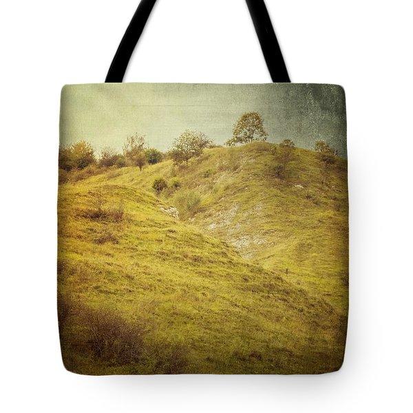 Salt Meadow Mounds Tote Bag by Mandy Tabatt