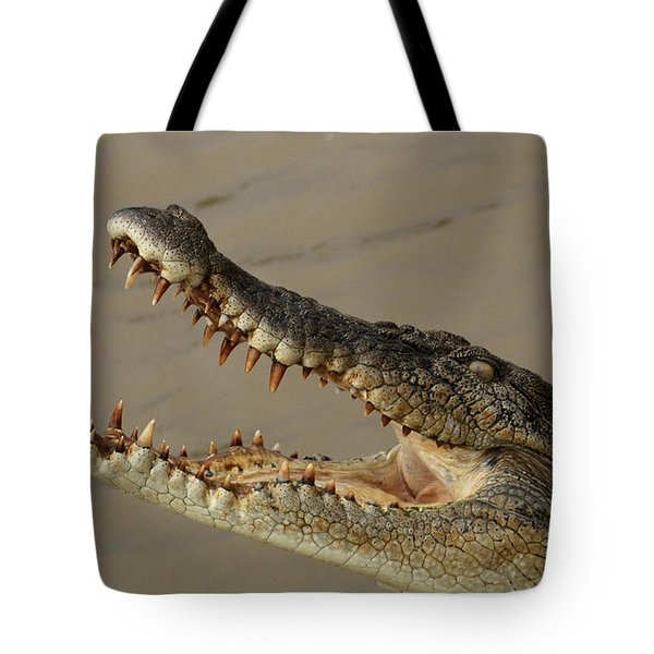 Salt Water Crocodile 1 Tote Bag