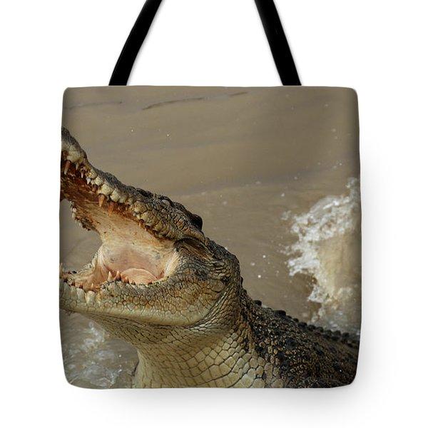 Salt Water Crocodile 2 Tote Bag by Bob Christopher
