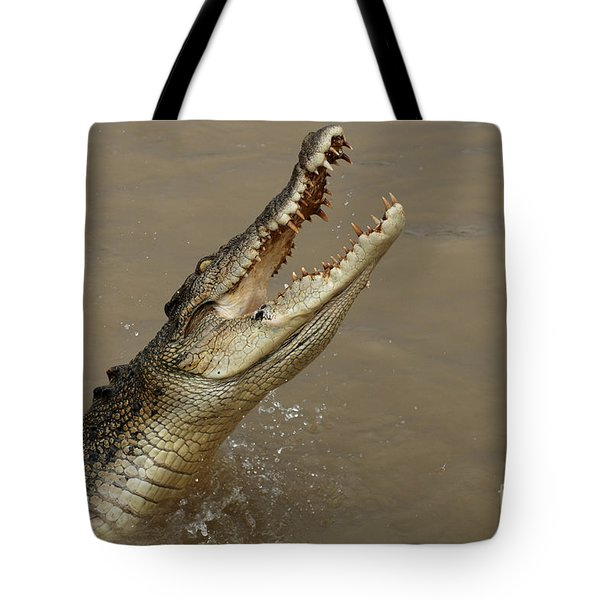 Salt Water Crocodile Australia Tote Bag by Bob Christopher