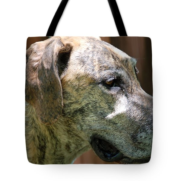 Sammy Tote Bag by Aimee L Maher Photography and Art Visit ALMGallerydotcom