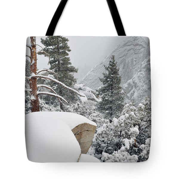 Tote Bag featuring the photograph San Jacinto Winter Wilderness by Kyle Hanson