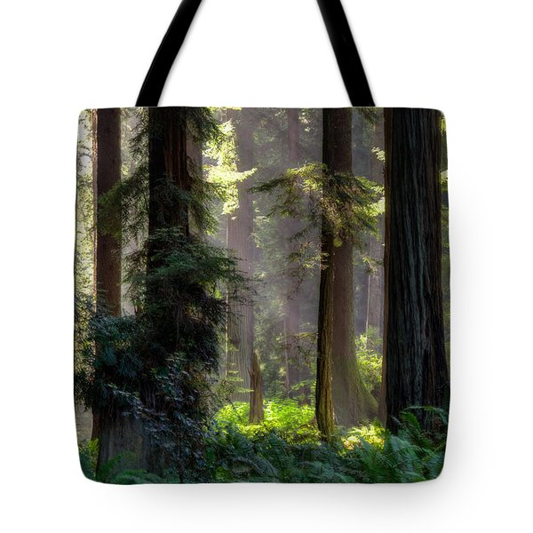 Sanctuary 2 Tote Bag
