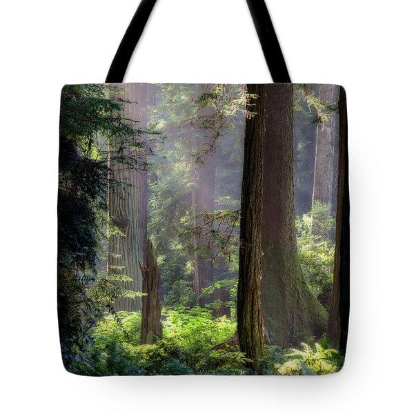 Sanctuary Tote Bag