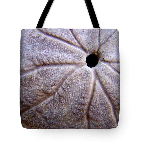 Sand Dollar 2 Tote Bag by Vicki Maheu