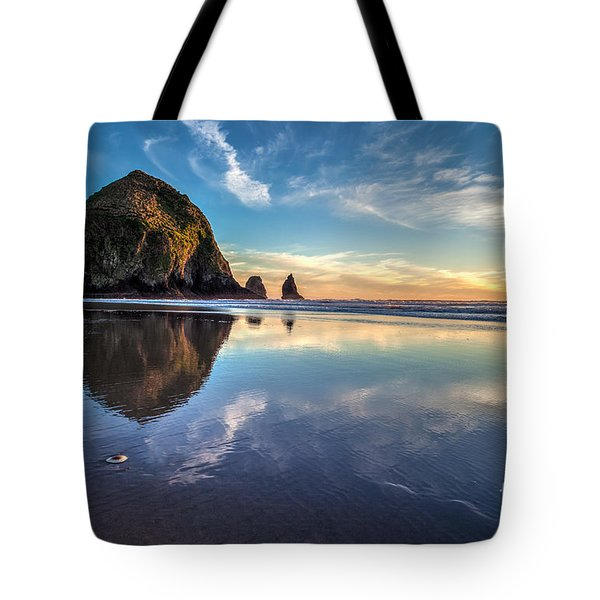 Sand Dollar Sunset Repose Tote Bag by Mike Reid