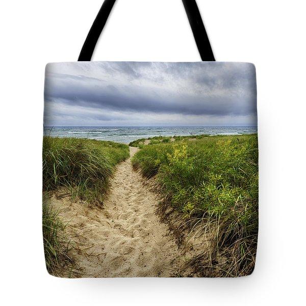 Sand Dunes Beach Path Tote Bag