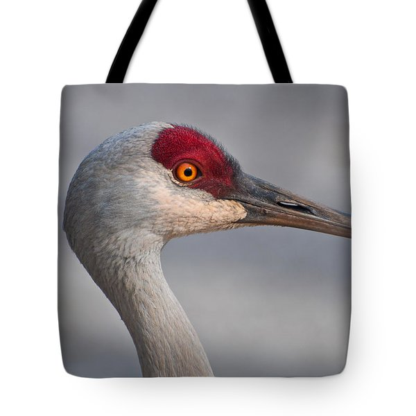 Tote Bag featuring the photograph Sand Hill Crane Portrait by Sabine Edrissi