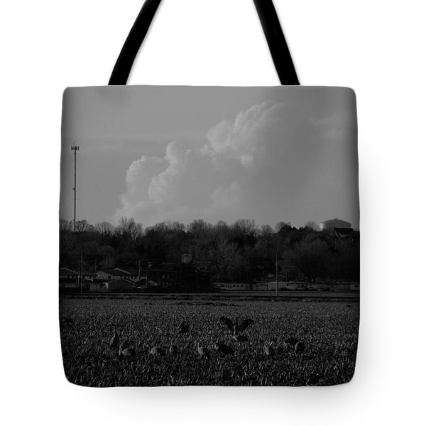 Sand Hill Cranes With Nebraska Thunderstorm Tote Bag
