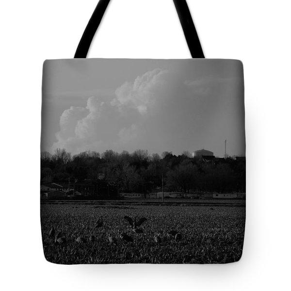 Sand Hill Cranes With Nebraska Thunderstorm Tote Bag