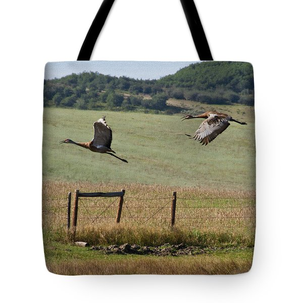Sand Hill Lift Off Tote Bag by Daniel Hebard