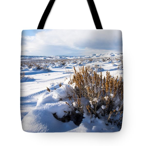 Sand Wash Basin In The Winter Tote Bag