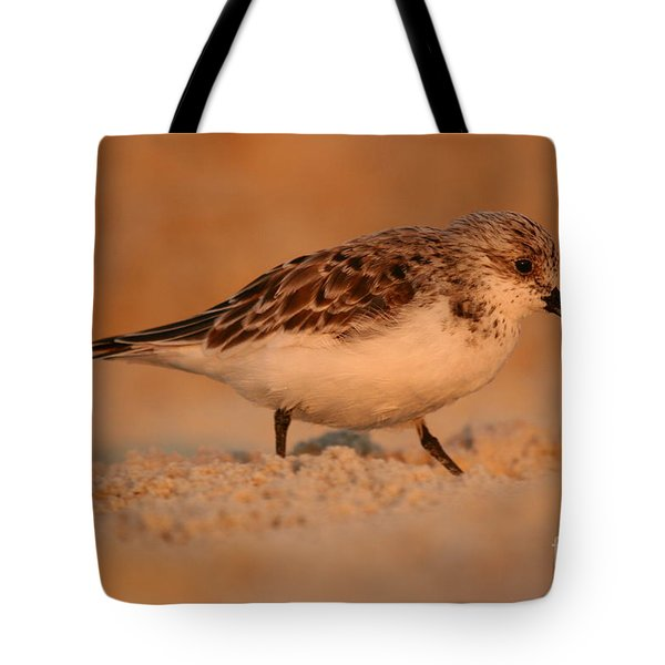 Tote Bag featuring the photograph Sanderling Sunrise by John F Tsumas