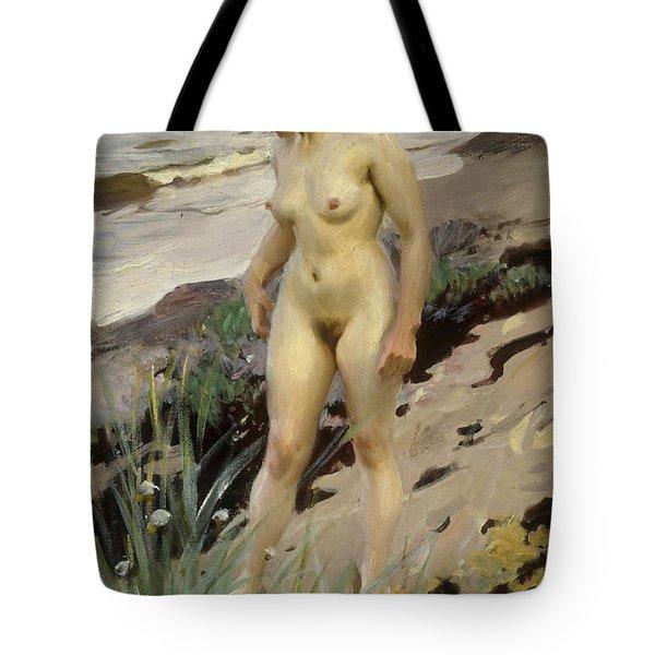Sandhamn Study Tote Bag