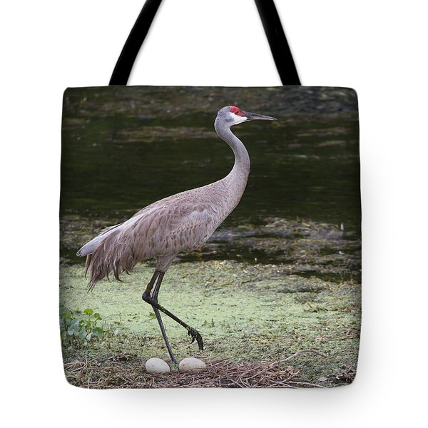Tote Bag featuring the photograph Sandhill Crane And Eggs by Paul Rebmann